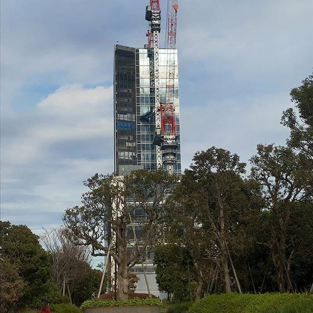 高層階棟も鉄骨組立は終わったらしい#定点観測#横浜駅